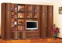 Изображение мебельной стенки в гостинной