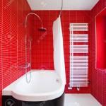 Red bathroom in a modern house