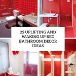 дизайн ванной красного белого цвета