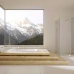комнатные растениЯ длЯ ванной комнаты без окон