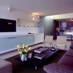 варианты интерьера зала в квартире фото